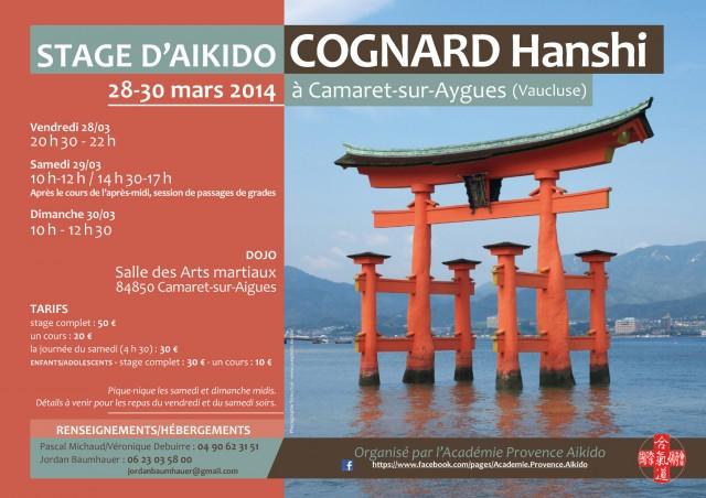 APA_Cognard_Hanshi_2014_web