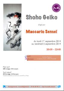 Shoho_Geoko_2014