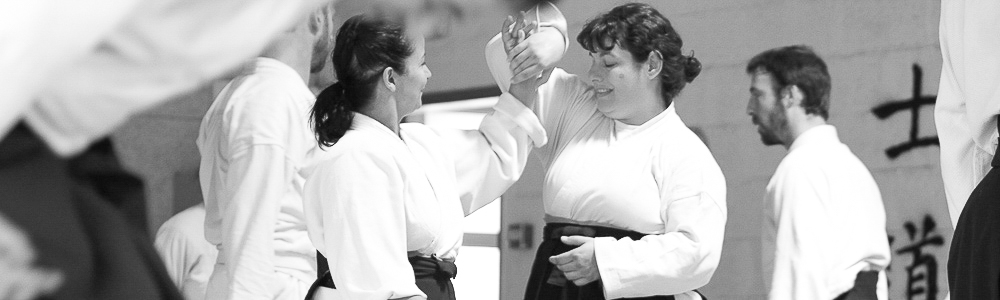 Aikido Aikishintaiso Marseille